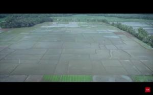 Foto Tampak Atas lahan Persawahan Para Petani di Desa Wlahar Wetan